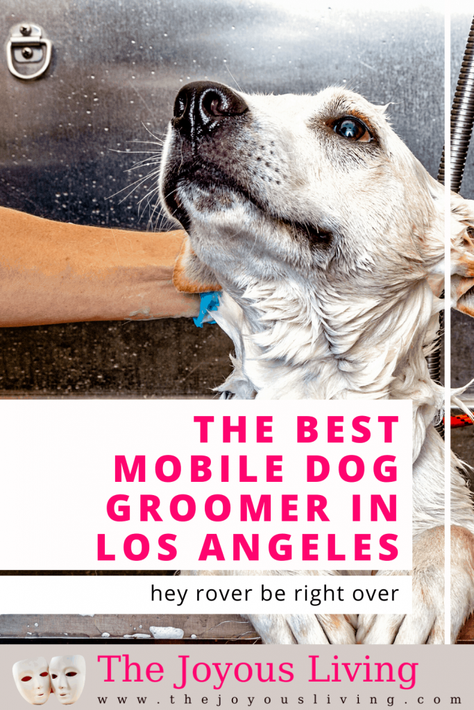Best Mobile Dog Groomer in Los Angeles. Hey Rover Be Right Over is the best mobile dog groomer in Los Angeles and Ventura County. Kaley with Hey Rover Be Right Over is trustworthy and a favorite with the dogs. #mobiledoggroomer #doggroomer #dogs #heyroverberightover #losangeles #thejoyousliving