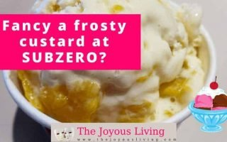 The Joyous Living: Fancy a Frosty Custard at SubZero?