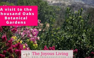 The Joyous Living: Thousand Oaks Botanical Gardens