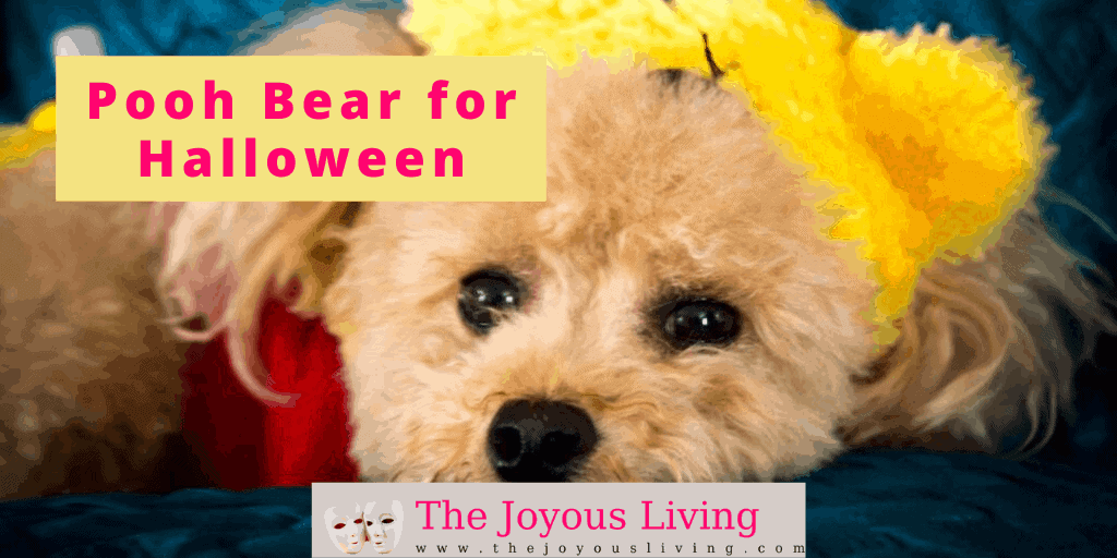 The Joyous Living: maizy desses as pooh bear for halloween