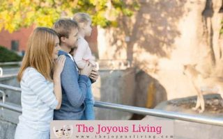 The Joyous Living: Zoo