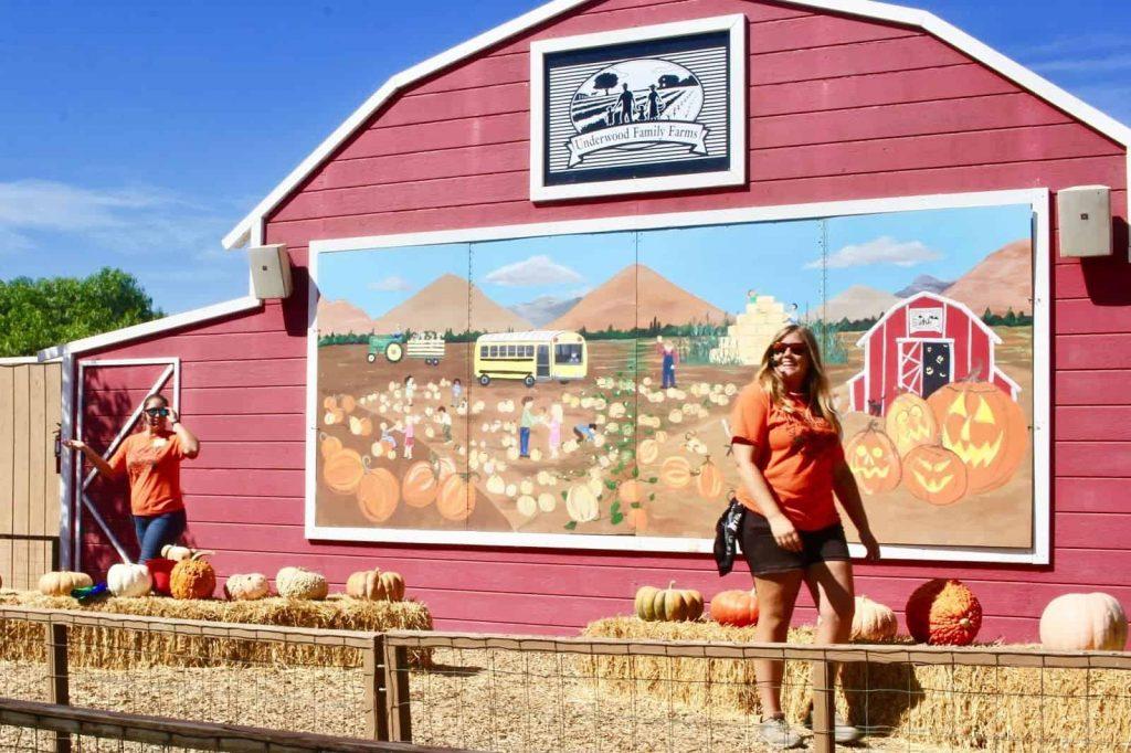 Underwood Farms Pig Races Emcees. (c) the joyous living.