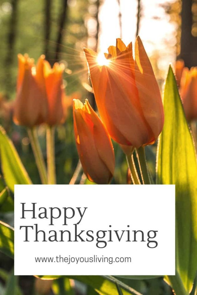 Happy thanksgiving from The Joyous Living. 4 reasons to praise God.