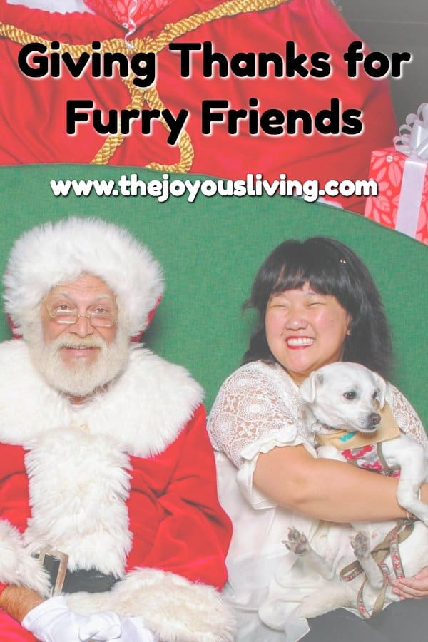 I give thanks for my furry friends. Their love is so special. (c) the joyous living