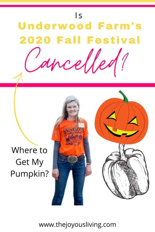 The fall festival at Underwood Family Farm in Moorpark has been cancelled for 2020. Pick your own pumpkin at Underwood Family Farm in Moorpark. Things to do in Los Angeles with the kids for Halloween. Visit the pumpkin patch at Underwood Family Farm in Moorpark. #underwoodfamilyfarms #pumpkinpatch #moorpark #losangeles #halloween #thejoyousliving