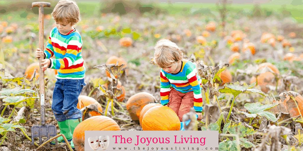 The Joyous Living: Halloween