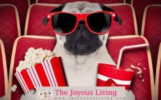 Movie Theater The Joyous Living