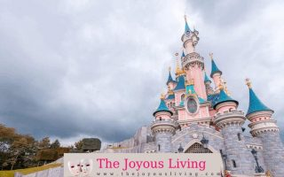 The Joyous Living: Disney