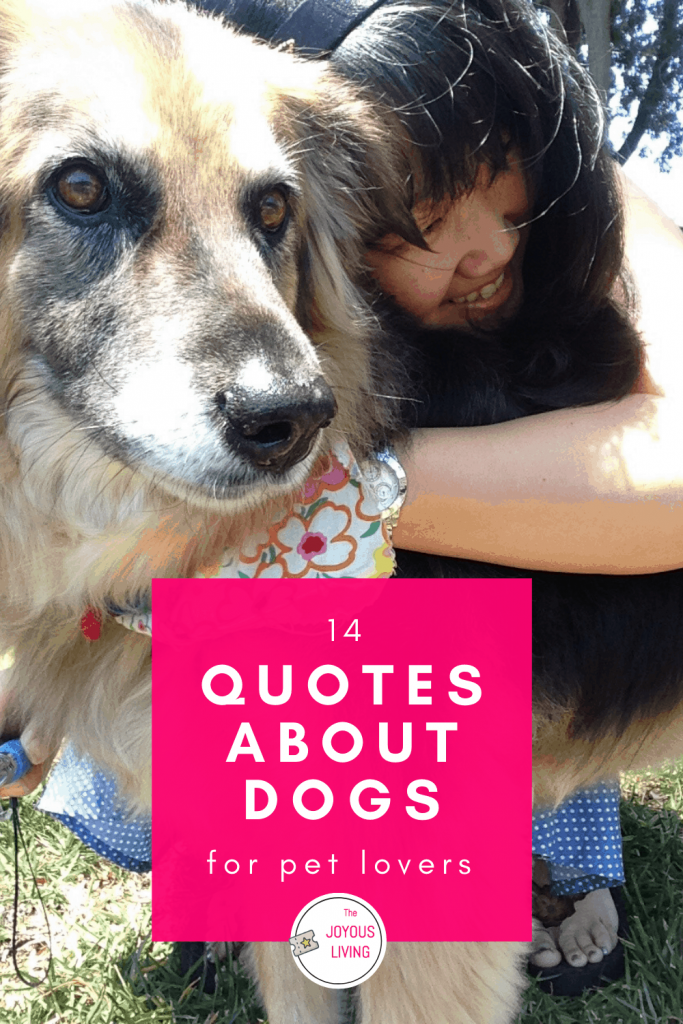 Pet Loss Quotes and Poems. 14 quotes about the love of a dog #dogs #love #loss #pets #quotes #thejoyousliving
