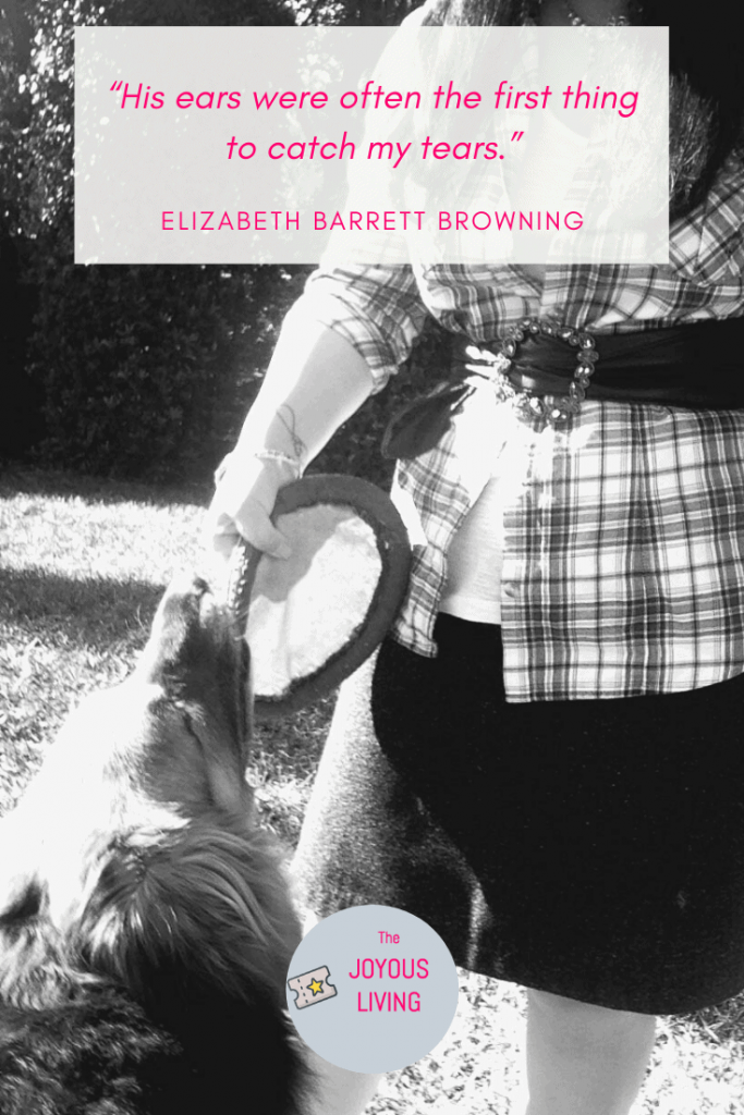 Quotes about the love of a dog #dog #dogs #love #pets #animals #elizabethbarrettbrowning #thejoyousliving