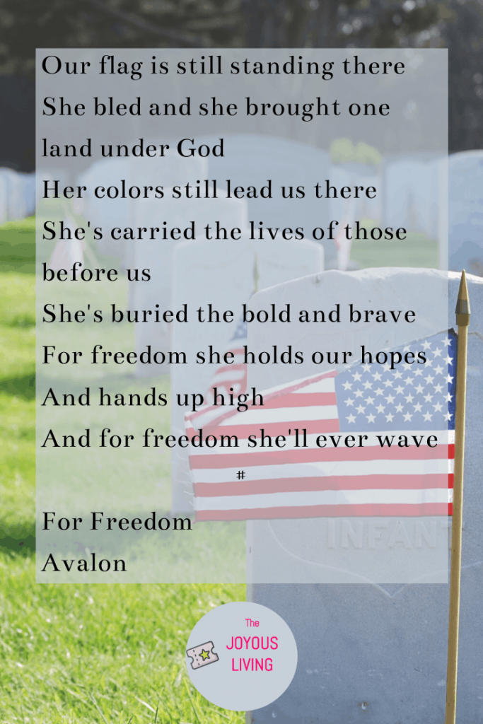 7 Patriotic Tunes for Flag Day #flagday #patriotic #music #songs #forfreedom #christian #avalon #holiday #america #thejoyousliving