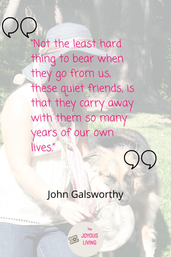 Quotes about losing a pet #quotes #pets #animals #dogs #johngalsworthy #blog #thejoyousliving