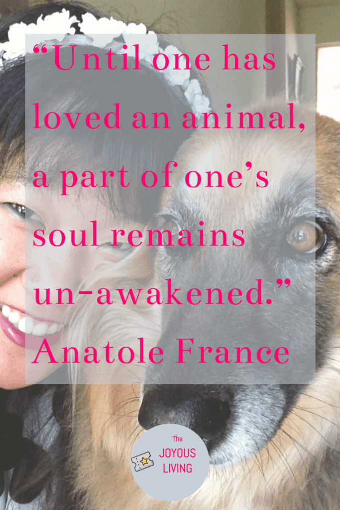 Quotes about animal lovers #quotes #animals #dogs #pets #anatolefrance #blog #thejoyousliving