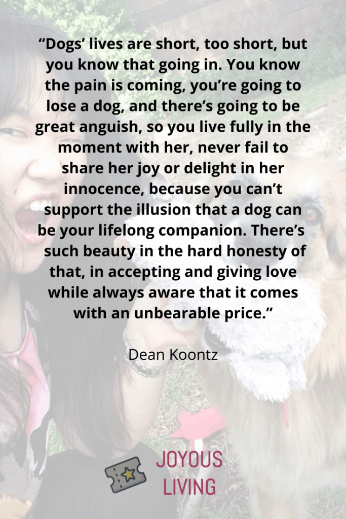 Quotes about losing dogs #deankoontz #quotes #author #dog #dogs #pets #animals #loss #thejoyousliving