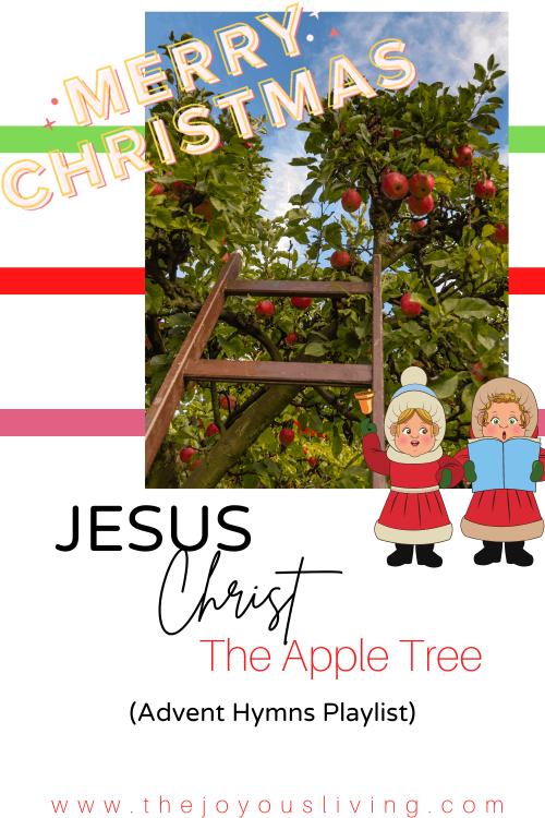 Jesus Christ the Apple Tree. Christmas Hymns.