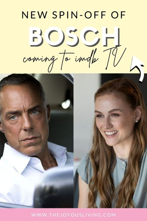 Bosch spin off
